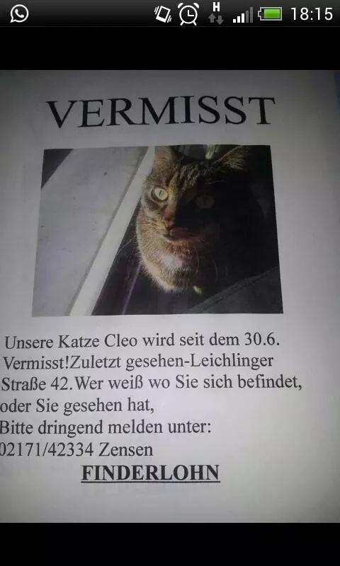 cleo3