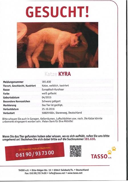 tasso-kyra07112016